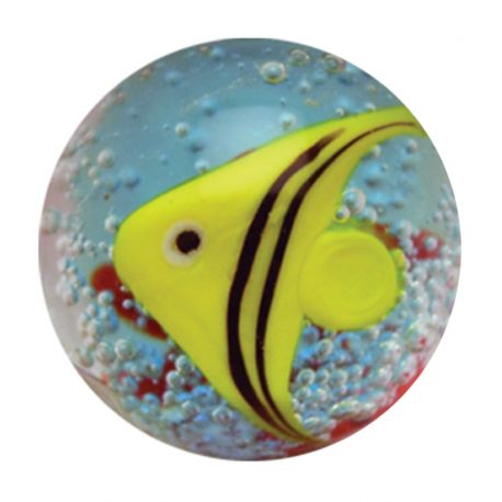 Bille de collection Poisson tropical